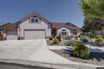 Gardnerville Single Family Home For Sale: 1361 Macenna