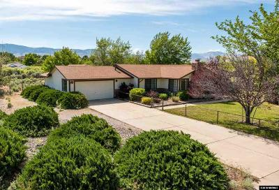 Carson City Single Family Home New: 450 Riparian Way