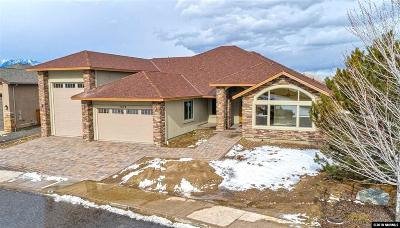 Gardnerville Single Family Home For Sale: 1074 Rocky Terrace