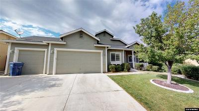 Fernley Single Family Home New: 720 Canary Circle