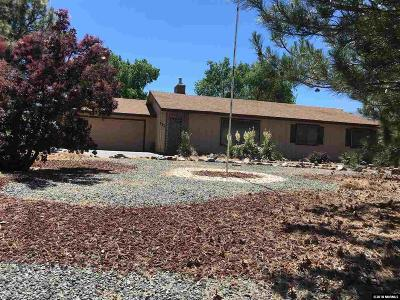 Carson City County Single Family Home New: 3520 Hillview