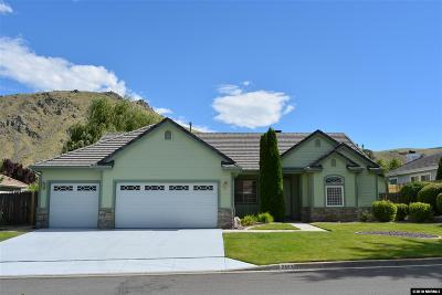 Carson City County Single Family Home New: 2533 Waterford Place