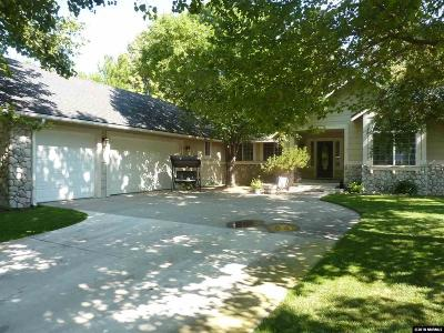 Minden Single Family Home For Sale: 1052 Aster