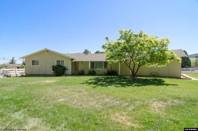 Washoe County Single Family Home New: 19700 Miner Lane