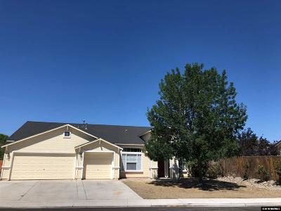 Fernley Single Family Home For Sale: 379 Cook Way