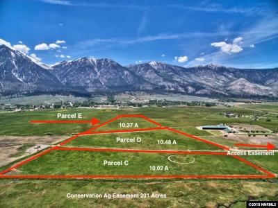 Gardnerville Residential Lots & Land For Sale: Parcel C Run Around Ranch
