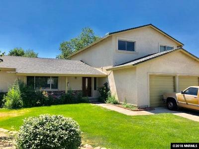 Sparks Single Family Home New: 711 Desert View Ct