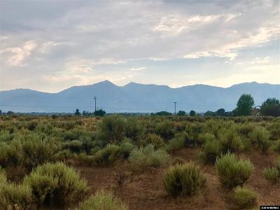 Gardnerville Residential Lots & Land For Sale: 1360 East Valley