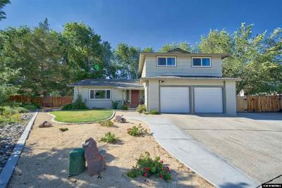 Sparks Single Family Home New: 732 Desert View Ct