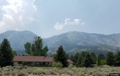 Gardnerville Single Family Home For Sale: 325 Reflection Ct.