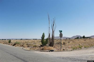 Yerington Residential Lots & Land For Sale: 45 Nadel