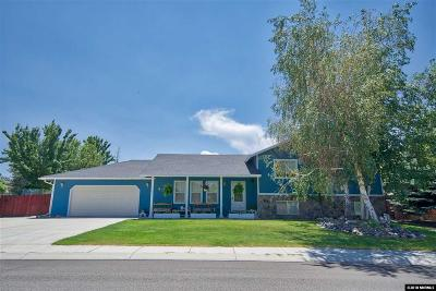 Gardnerville Single Family Home For Sale: 1429 Shasta Drive