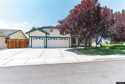 Sparks Single Family Home For Sale: 1726 Canyon Terrace Drive