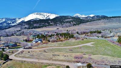 Washoe Valley Residential Lots & Land For Sale: White Pelican