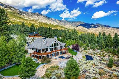 Gardnerville Single Family Home For Sale: 279 Five Creek