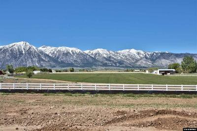 Gardnerville Residential Lots & Land Active/Pending-Call: 932 Rain Shadow Way