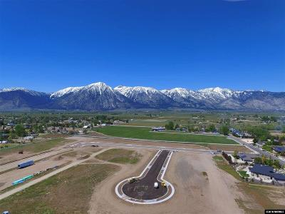 Gardnerville Residential Lots & Land Active/Pending-Call: 925 Rain Shadow Way