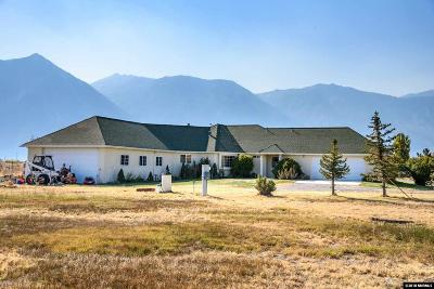 Gardnerville Single Family Home For Sale: 969 Centerville