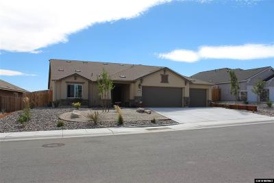 Carson City Single Family Home For Sale: 6516 Arc Dome
