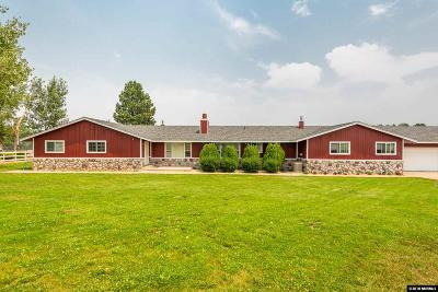 Washoe County Single Family Home For Sale: 5720 Old Hwy 395