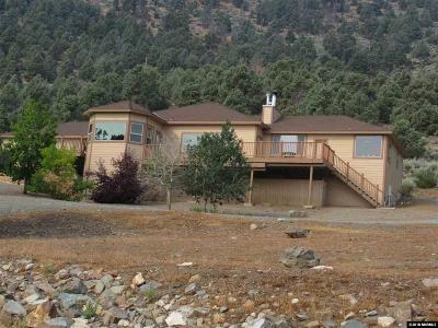 Gardnerville Single Family Home For Sale: 3228 Highland Way