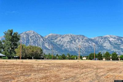 Gardnerville Residential Lots & Land For Sale: 1135 Centerville Lane