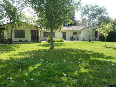 Gardnerville Single Family Home For Sale: 978 Birdie Ct.