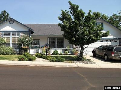 Reno Single Family Home For Sale: 3161 Sky Country
