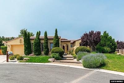 Washoe County Single Family Home For Sale: 5705 Rue Saint Tropez