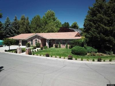 Carson City Single Family Home For Sale: 1800 Newman Place