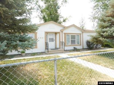 Winnemucca Manufactured Home For Sale: 4690 Pogonip Dr.