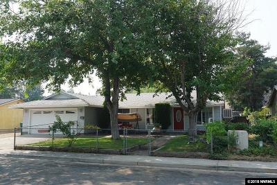 Carson City Single Family Home For Sale: 901 Pat Lane