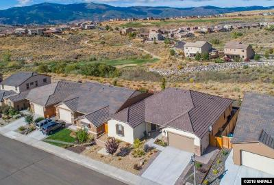 Reno Single Family Home For Sale: 1705 Scott Valley Road