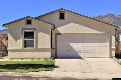 Washoe County Single Family Home For Sale: 9265 Red Baron