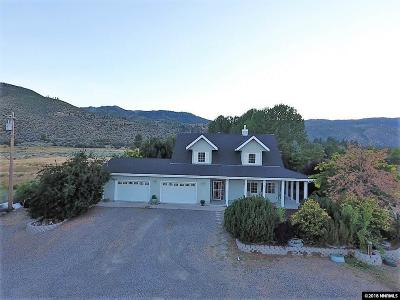 Washoe County Single Family Home For Sale: 7501 Old Hwy 395 North