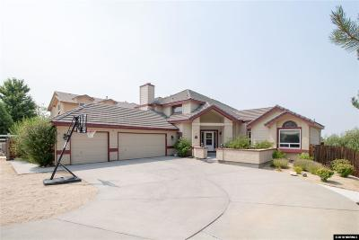 Reno Single Family Home For Sale: 13335 Rim Rock Dr.