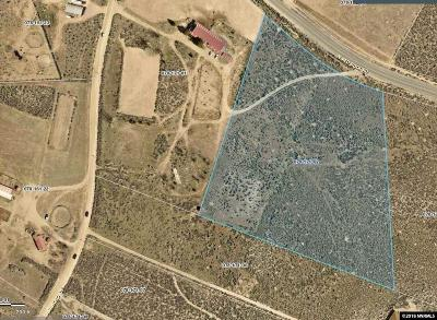 Reno Residential Lots & Land For Sale: 16005 N Red Rock Road