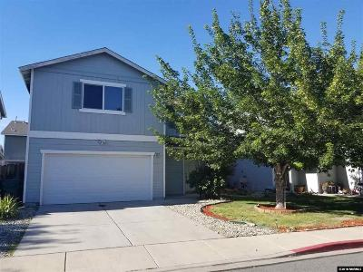 Washoe County Single Family Home New: 4075 Weeping Willow Court