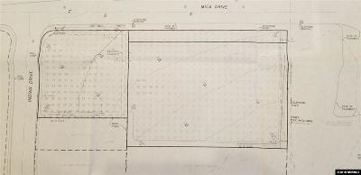 Minden Residential Lots & Land For Sale: 928 Mica Drive Et Al