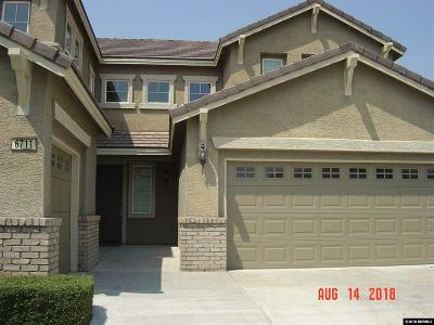 Washoe County Single Family Home New: 6711 Magical Dr.