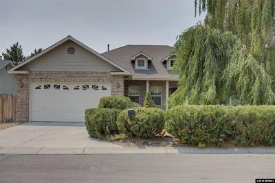 Carson City Single Family Home For Sale: 1143 Gold Meadow Ct