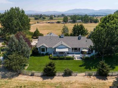 Gardnerville Single Family Home For Sale: 1208 Waterloo