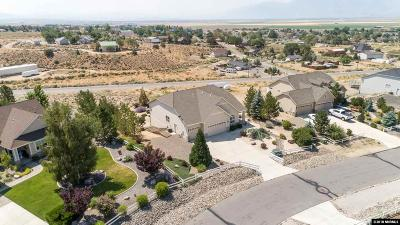 Minden NV Single Family Home For Sale: $749,900