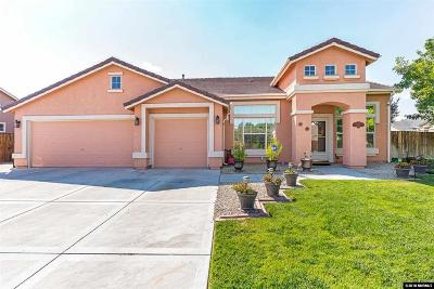 Fernley Single Family Home For Sale: 357 Cook