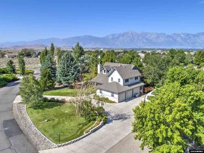 Gardnerville Single Family Home For Sale: 1070 Cortez