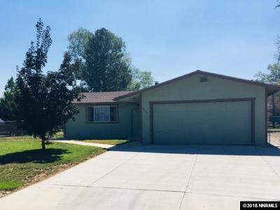 Gardnerville Single Family Home For Sale: 1351 Marlette Cir