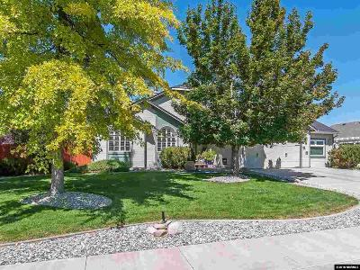 Gardnerville Single Family Home For Sale: 1492 James Road