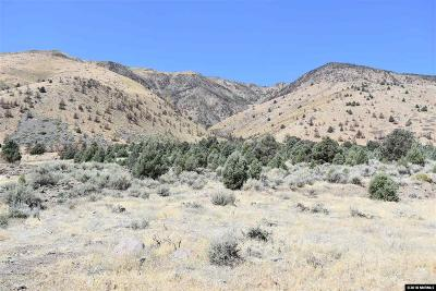 Gardnerville Residential Lots & Land For Sale: 1980 S Hwy 395