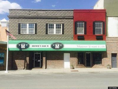 Winnemucca Commercial For Sale: 237 S Bridge St.
