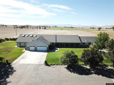 Yerington Single Family Home Active/Pending-House: 61 Giorgi Lane